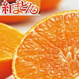 【送料無料】愛媛県産 紅まどんな L〜2L 3kg【ご家庭用】【ご贈答用】【紅マドンナ】