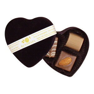 バレンタイン チョコ 2020 ロイスダール ハートショコラ ファンシー 黒