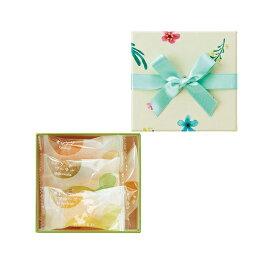 ギフト 贈り物 彩果の宝石 カジュアルボックス(柑橘)CB-K  熨斗包装不可