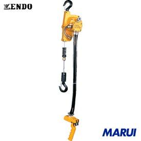 ENDO エアーホイスト EHW-120R 120kg 1.9m 0.6mPa 1台 遠藤工業 チェンブロック クレーン 【DIY】【工具のMARUI】