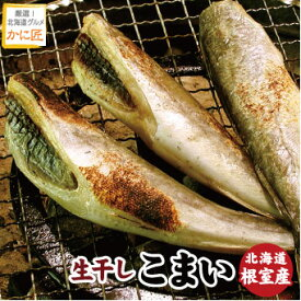 北海道根室産 一夜干し氷下魚 こまい コマイ カンカイ 500g 珍味 乾 おつまみに