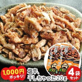 塩辛 干しちゃった 乾燥イカ塩辛珍味 20g×4袋セット【メール便 送料無料】