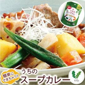 札幌の食卓 うちのスープカレー(昆布だし和風) 2食(50g×2袋入) MIXスパイス1g×2袋付【メール便 送料無料】