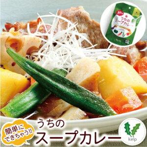 札幌の食卓 うちのスープカレー(昆布だし和風)1袋(2食入)MIXスパイス付き【メール便 送料無料】