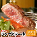 ラム肉 生ラムランプステーキ用 焼肉 100g千歳ラム工房 北海道 肉の山本
