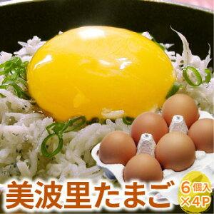 【自然農法】ぜひとも生で味わって頂きたい美味しさ!美波里のたまご 6個×4パック 北海道根室産 の びばりの卵(玉子)合計24個