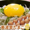 【自然農法】ぜひとも生で味わって頂きたい美味しさ!美波里のたまご 10個×3パック 北海道根室産 の びばりの卵(玉…
