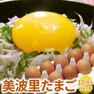 【自然農法】ぜひとも生で味わって頂きたい美味しさ!美波里のたまご 10個×3パック 北海道根室産 の びばりの卵(玉子)合計30個