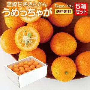 宮崎 完熟 きんかん うめっちゃが 2L サイズ (1kg) 5箱セット 送料無料 糖度 16度以上 金柑 樹上完熟 キンカン 大粒 で 皮ごと 食べられる ギフトプレゼント