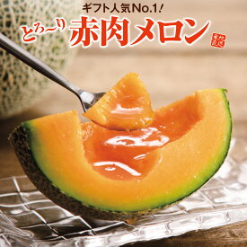 熊本県産 メロン 赤肉メロン 1玉(約1Kg) 送料無料 光糖度センターで14度以上確認済み グルメ 贈答 産直