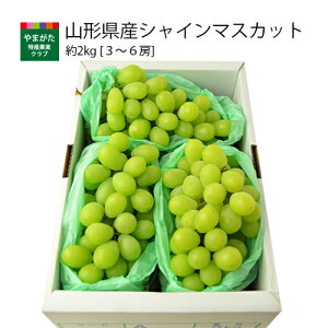 山形県産シャインマスカット約2kg(3〜6房)