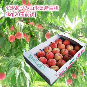 《訳あり》山形県産白桃5kg箱相当(20玉前後)