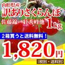 【訳あり】山形産さくらんぼ(佐藤錦、紅秀峰、他)1kg
