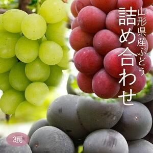 山形県産ぶどう詰め合わせ3房(約1〜1.5kg)