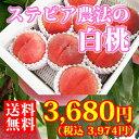 中野さんの「白桃」2.5kg[7〜11玉]