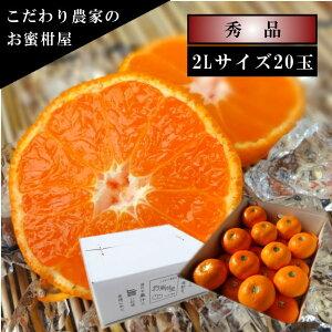 濃厚柑トロのお蜜柑「蜜ツ星(みつぼし)」 白のギフト箱 2Lサイズ 秀品 20玉入