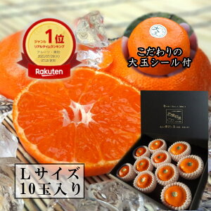 濃厚柑トロのお蜜柑「蜜ツ星(みつぼし)」 黒の化粧箱 Lサイズ 秀品 10玉入