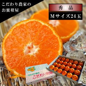 濃厚柑トロのお蜜柑「蜜ツ星(みつぼし)」 白の化粧箱 Mサイズ 秀品 24玉入