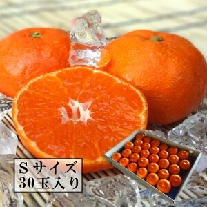 濃厚柑トロのお蜜柑「蜜ツ星(みつぼし)」 白の化粧箱 Sサイズ 秀品 30玉入