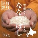 【北海道の米屋しか手に入らない】曽根さんが育てた「ななつぼし」 5kg 29年産 北海道もせうし産 <玄米・白米・分づ…