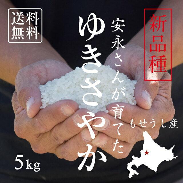 【北海道の米屋しか手に入らない】安永さんが育てた「ゆきさやか」 5kg 30年産 北海道もせうし産 <玄米・白米・分づき米>【送料無料】※沖縄・離島は除く