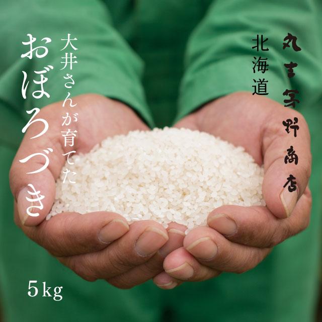 【北海道の米屋しか手に入らない】大井さんが育てた「おぼろづき」 5kg 30年産 北海道もせうし産 <玄米・白米・分づき米> 【送料無料】※沖縄・離島は除く