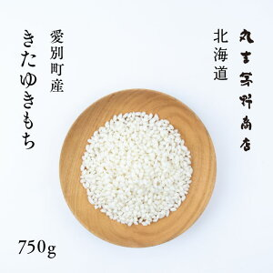 北海道きたゆきもち 750g(5合) 愛別町産 令和2年産 【送料無料】