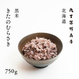 北海道産 黒米 きたのむらさき 750g 【送料無料】
