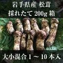 送料無料!岩手産松茸200g(1〜10本)大小混合松茸がお料理に映えます。【同梱不可】