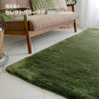 20色・7サイズから選べる!カラーセレクト・ラグ丸洗いOK床暖房&ホットカーペットカバー対応サイズ:約200×250cm