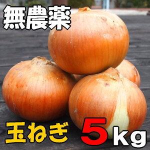 無農薬栽培【たまねぎ 5kg】北海道産 知床産玉ねぎ 送料無料