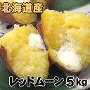 送料無料 新じゃがいも レッドムーン 5kg 北海道産 ジャガイモ 産地直送
