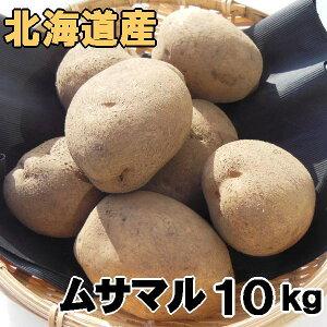 送料無料 新じゃがいも ムサマル 10kg 北海道産 ジャガイモ 産地直送