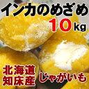 インカのめざめ 10kg 新じゃがいも 北海道産 ジャガイモ 送料無料