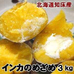 インカのめざめ 3kg 新じゃがいも 北海道産 ジャガイモ 送料無料