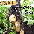 北海道産越冬じゃがいも!【メークイン5kg】知床の麓より産地直送!