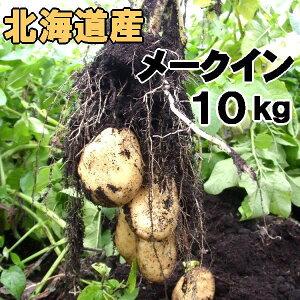 送料無料 越冬じゃがいも メークイン 10kg 北海道産 ジャガイモ 産地直送