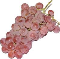山梨県甲州辛口白ワイン
