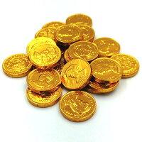 国産コインチョコレート小【業務用】500g