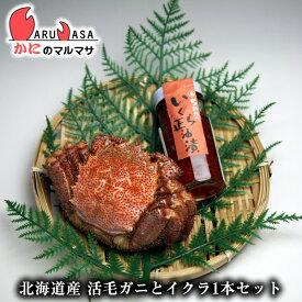 北海道産 活毛がに350g×1尾&いくら醤油×1本セット 毛蟹 毛ガニ カニ通販 道産品 父の日 ギフト