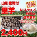 【訳有り】【送料無料】山形県産泥付き「里芋」お徳用 約5kg(S〜Lサイズ)