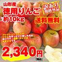 【送料無料】【訳有り】山形産徳用りんご 約10kg サイズ・品種おまかせ 規格外品 小傷色ムラ変形等あり 山形 りんご 林檎 産直 自家用