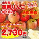 【予約】【送料無料】【訳有り】山形産徳用りんご 約10kg サイズ・品種おまかせ 規格外品 小傷色ムラ変形等あり 【…