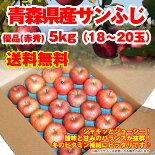 【送料無料】青森県産「ふじりんご」秀品5kg(18-20玉)