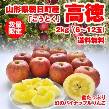 【送料無料】蜜だらけりんご山形県朝日町産「高徳」2kg(6-12玉)