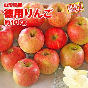 【予約】【送料無料】【訳有り】山形産徳用りんご 約10kg サイズ・品種おまかせ 規格外品 小傷色ムラ変形等あり 山形 りんご 林檎 産直 自家用