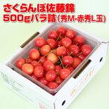 さくらんぼ佐藤錦500g(500g×1)バラ詰