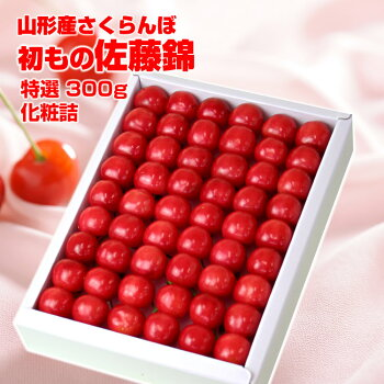 ハウス佐藤錦300g(300g化粧詰)1段詰