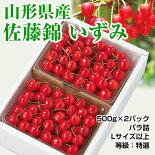 佐藤錦「いずみ」1kg(500g×2)バラ詰
