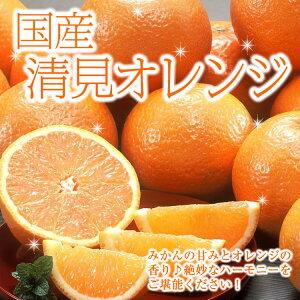 【送料無料】【ギフト】国産 清見オレンジ 5kg みかん オレンジ 楽ギフ_のし 楽ギフ_のし宛書 楽ギフ_メッセ入力